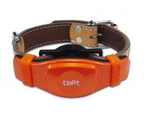 GPS-ошейники для для домашних животных кошек и собак